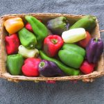 A basket of peppers at the Marietta Square Farmers Market.