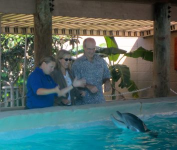My husband and I bonding with our finned friend at Our Poolside Dolphin Meet and Greet at Gulf World Marine Park, a must-do in Panama City.