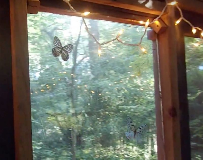airbnb treehouse, butterfly window