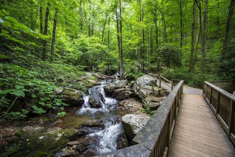 Anna Ruby Falls in North Georgia
