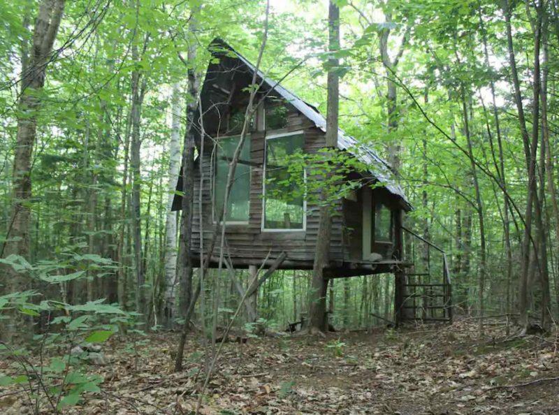Treehouse Hostel at D Acres Farm