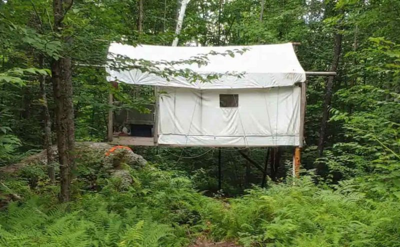 Treehouse Tent on Toad Hill